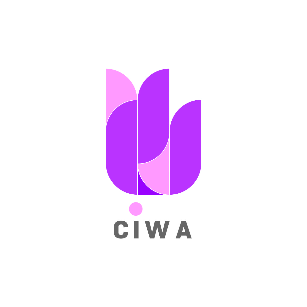 CIWA Express Cleaning